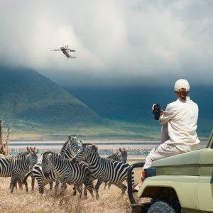 Quels sont les meilleurs endroits à visiter en solo pour un safari?
